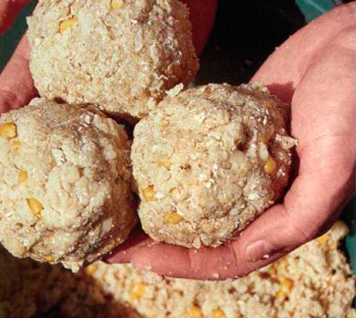 Прикормка для карпа летом своими руками рецепты